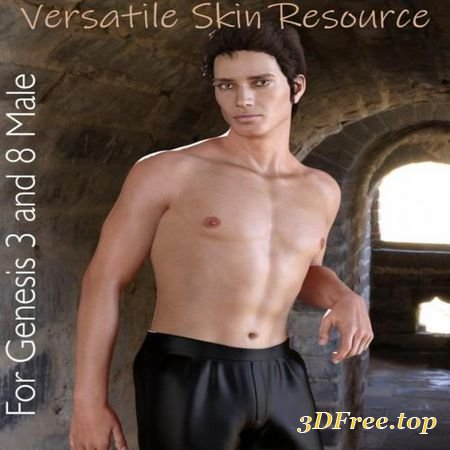 VERSATILE SKIN TEXTURE MERCHANT RESOURCE FOR GENESIS 3 AND 8 MALE (Poser)