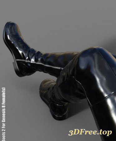 FLAT BOOTS 2 FOR GENESIS 8 FEMALE(S) (Poser)