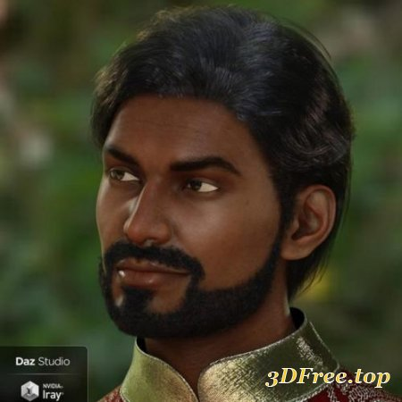 DFORCE SANJAY HAIR AND BEARD FOR GENESIS 8 MALE(S)