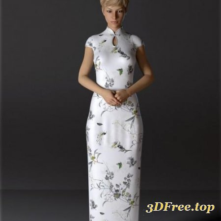 dForce H&C Long Qipao Dress for Genesis 8 Female(s)