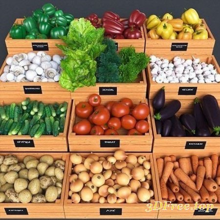 SET OF FRESH VEGETABLES TO THE STORE
