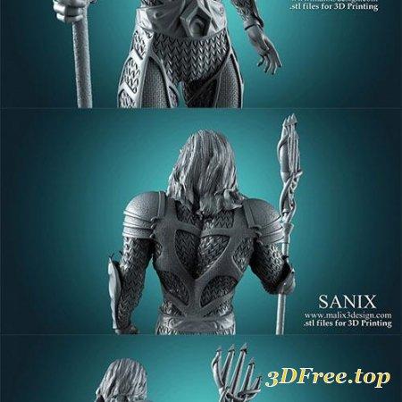 Aquaman - 3D Printable Model