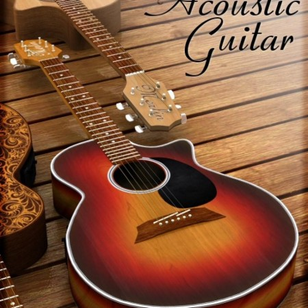Acoustic Guitar by Merlin
