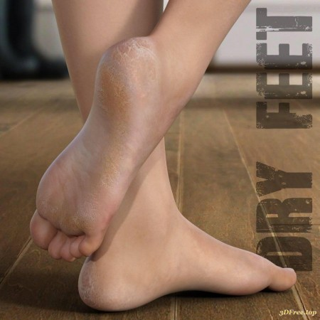 Dry Feet for Genesis 3 and 8