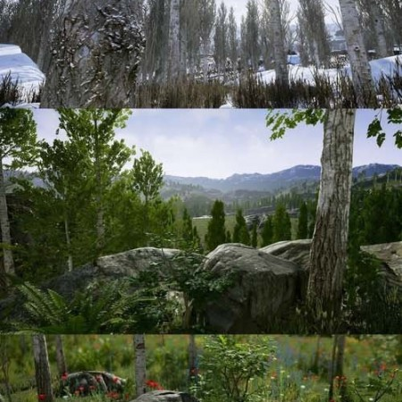 Scanned Poplar and Aspen Forest with Seasons for Unreal Engine 4 Low-poly 3D model