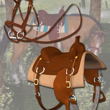 Western Horse Tack for the Millennium Horse