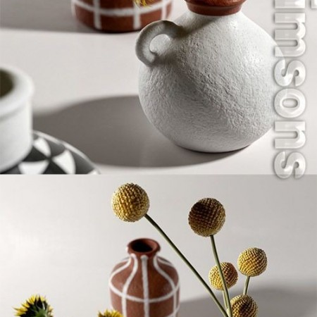 Morocco Vases with Flowers 3D model