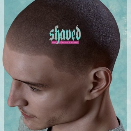 Daz3D - Shaved Hair for Genesis 3 Male(s)