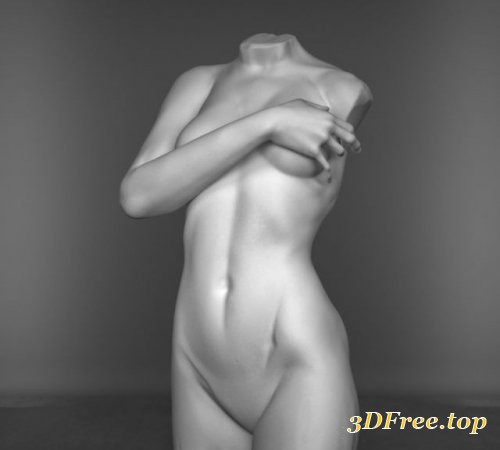 Torso Woman Sculpture 3D model