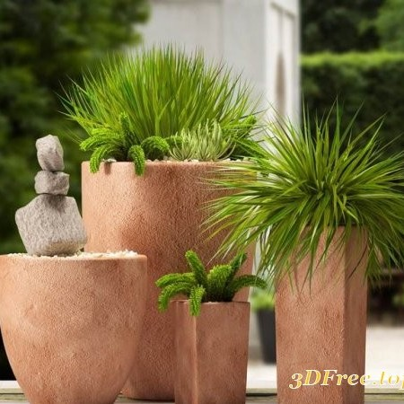 Modern potted plants 32 3D model