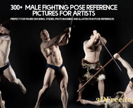 Artstation – 300+ Male Fighting Pose Reference Pictures