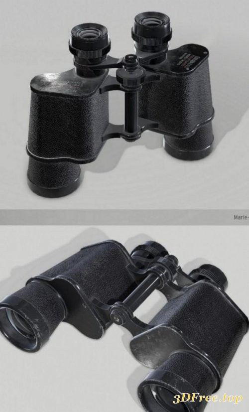 Tasco model 310 binoculars