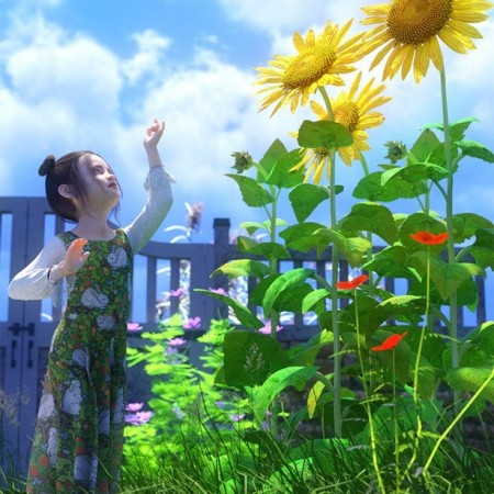 Sunflower Plants for Daz Studio and Iray