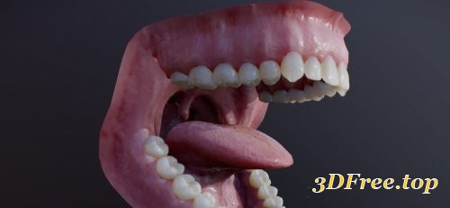 Photorealistic human mouth