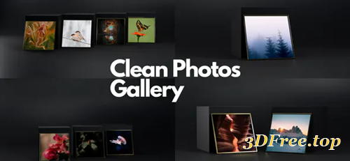 Videohive Clean Photos Gallery 30077883