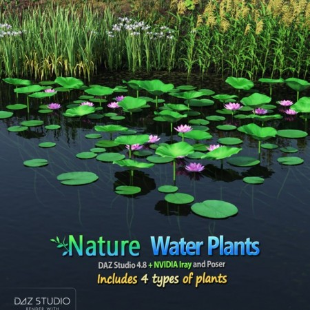Nature – Water Plants